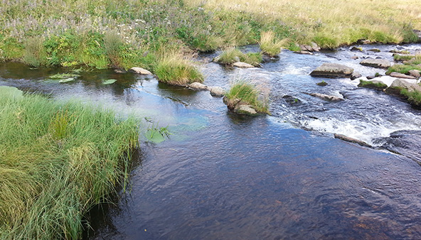 AGT 43: Kysela voda Sumavy